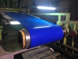 Top Product Color Coated Galvanized Steel Coils with Best Price