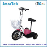 Smartek New Product 3 Wheel Electric Self Balance Scooter Patrol Carleisure Easy to Control Electric Tricycle High Security Electric Scooter Jx-006A