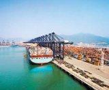 Ningbo/China Container Trailer / Logistics Shipping to Asuncion Santa-Marta