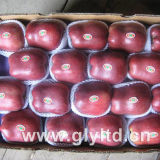 Top Quality for Exporting Fresh Huaniu Apple