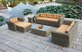Garden Patio Wicker Rattan Outdoor Furniture (T3211)