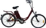 Cheap Electric Bicycle for Female and Male Style