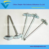 Hot Sales Umbrella Head Roofing Nails (Factory price)