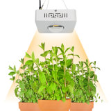 Wholesale Professional 100W Full Spectrum Cxb3590 COB LED Plant Grow Light