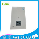 Combin Wall Wounted Gas Water Heater