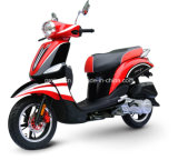 50cc for Moto Scooter with EEC Certification (SP50QT-13)