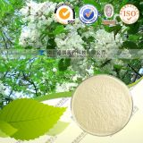 High Quality Sophora Flower Bud Extract Quercetin