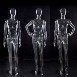 Plastic Mannequin (PC) Transparent