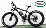 500W Big Power Fat Tire Mountain Electric Bike