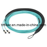 MTP-MTP 12 Fiber Cores Om3 10g Fiber Optic Patch Cord