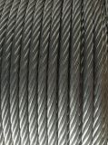Manufacturer Galvanized Steel Wire Rope Cable 6X37+ Iwrc