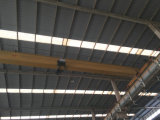 10 Ton Electric Single Girder Overhead Crane with Swf Motor