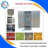 Commercial Use Blast Freezer for Sale