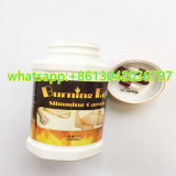 Burning Fat Slimming Capsule Diet Products with Good Price