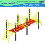 CE Certified Outdoor Fitness Equipment (HA-13104)