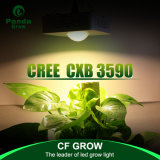 High Quality 100W LED Grow Light Full Spectrum Cxb3590