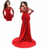 Long Sleeve Wine Kniited Lace Mermaid Feather Evening Dresss