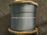 Steel Wire Rope, Galvanized Steel Wire Rope 19*7
