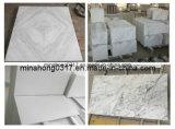 Pure White Marble/Carrar White/Statuary White/White Marble/Guangxi White/New Statuario White Tiles/Slabs