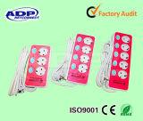 Power Extension Strip, Electrical Socket, European Type