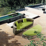 Garden Treasures Outdoor Royal Garden Patio Furniture Sofa Set