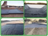 4.5m*100m Black PP Woven Ground Cover PP Geotextile Supply by Sincere Factory Price