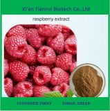 Best Price Raspberry Extract Powder for Sale