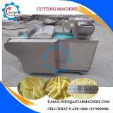 Dqs-800A 500kg/H Vegetable Chopper Strip Cutter Machine
