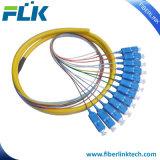 Sc LC FC St Connector 12 Core Fan-out Bundle Fiber Optic Pigtail