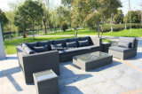 Rattan Sofa Set (FSS-CJ-1171)