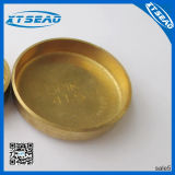 Water Plug Brass Sealed Engine Cap