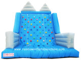 Inflatable Sports Toys of Inflatable Climbing Wall (Rb13006)