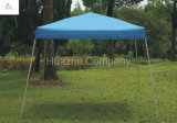 2.5X2.5/3X3m Canopy, Hot Seel Tent, Good Quality, Gazebo with Wheel Bag