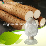 Wild Yam Extract Diosgenin 20%