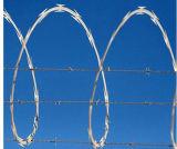 Single Coil Razor Barbed Wire/ Concertina Razor Barbed Wire