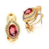 Hot Sales 925 Silver Hoop Earrings CZ Jewelry Gold Plate