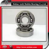 Most Competitive Precision Deep Groove Ball Bearing 6406