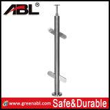 Stainless Steel Handrail Pool Balustrade/Post Dd305)