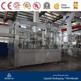 Small Scale Carbonated Beverage Filling Line