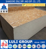 High Quality OSB1/2/3 Board for Furniture with Dieffenbacher Machine