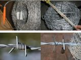 Good Qualtity Steel Barbed Wire Coils