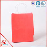 Top Quality Custom Logo Printed Boutique Shopping Paper Bag with Blue Nylon Rope