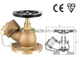 Fire Fighting Equipment-Fire Landing Valve