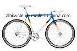 City Grounds Single Fixie Gear Bikes