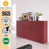 Chinese Factory Direct Sale Book Cabinet (G12)