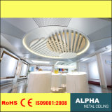 Aluminum Metal Exterior Outdoor Shaped Decorated Suspended False Ceiling
