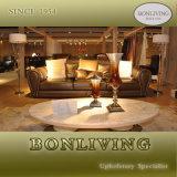 Original Italian Design Living Room Furniture/Post Modern Living Room Furniture (B14-1)