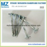 E. Galvanized Umbrella Flat Head Roofing Nail with Twist Shank