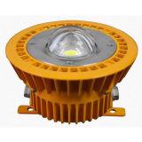30W Atex Anti Explosion LED Lamp Lighting