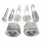 High Quality Exotic Alloy Hastelloy B3 Fastener